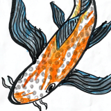 Illustration of a koi.